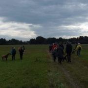 hundewanderung an der mulde