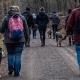 social walk1812